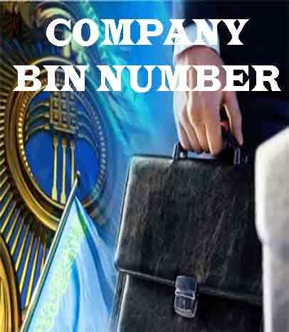 Company BIN number in Kazakhstan